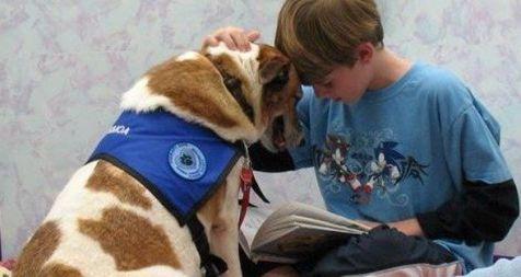 terapia-asistida-con-animales-autismo