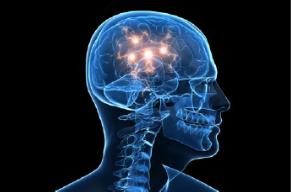 dopamine-brain
